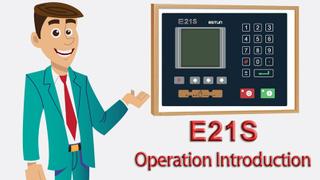 E21S-Operation-insign.jpg